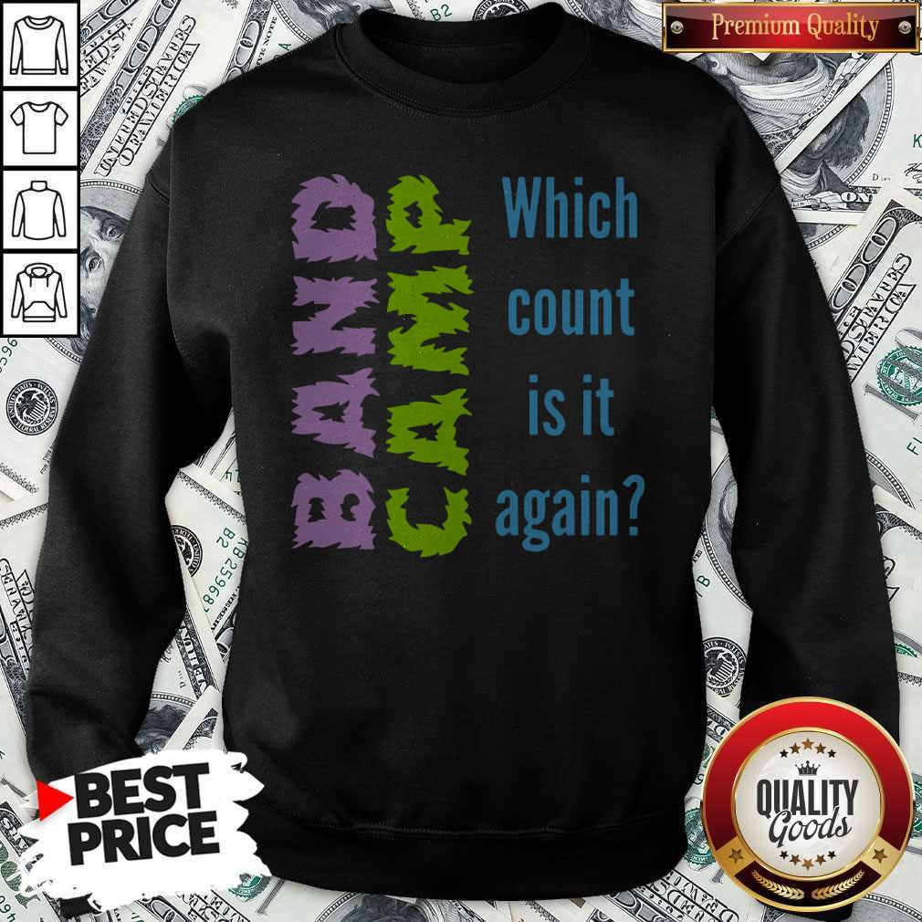 Band Camp Which Count Is It Again Sweatshirt