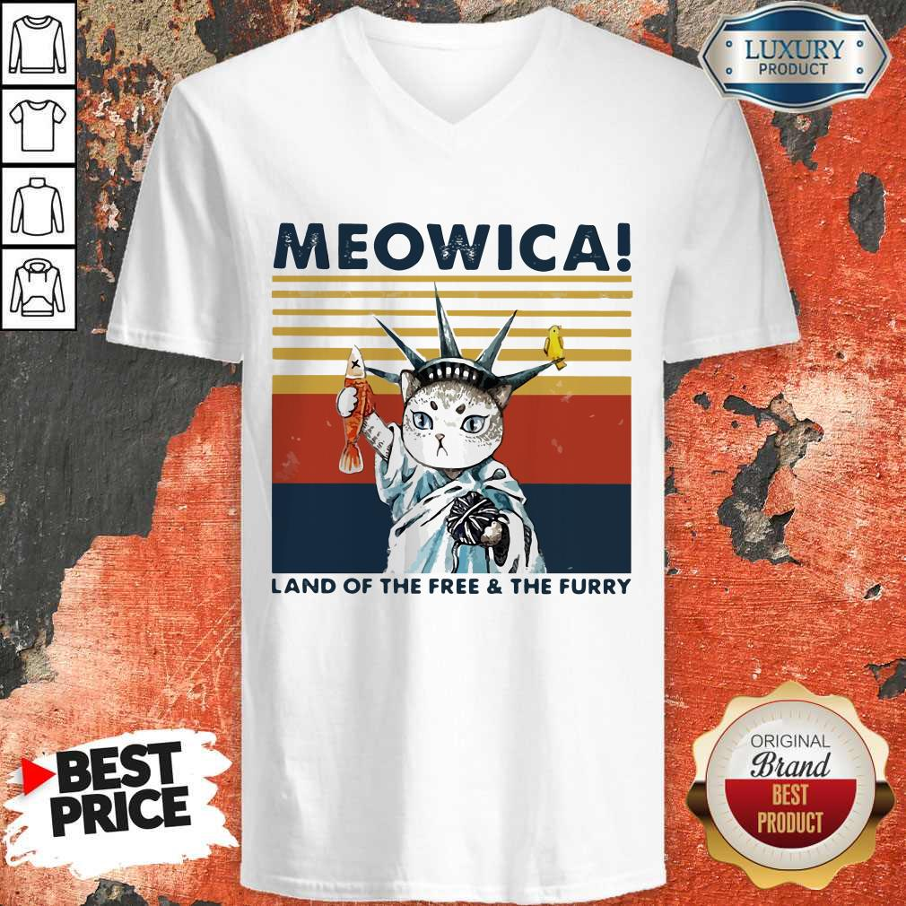 Meowica Land Of The Free And The Furry Vintage Retro V- neck