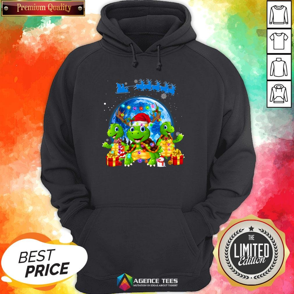 Funny Turtles Merry Christmas Hoodie Design By Agencet.com