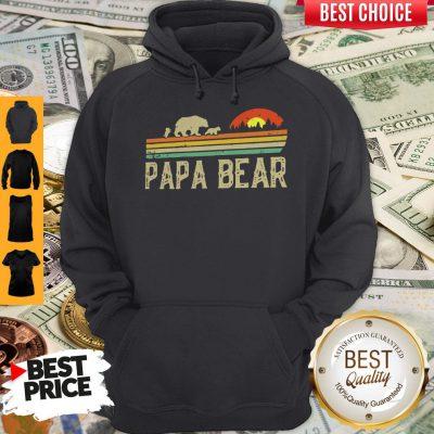 Nice Papa Bear Fathers Day Hoodie