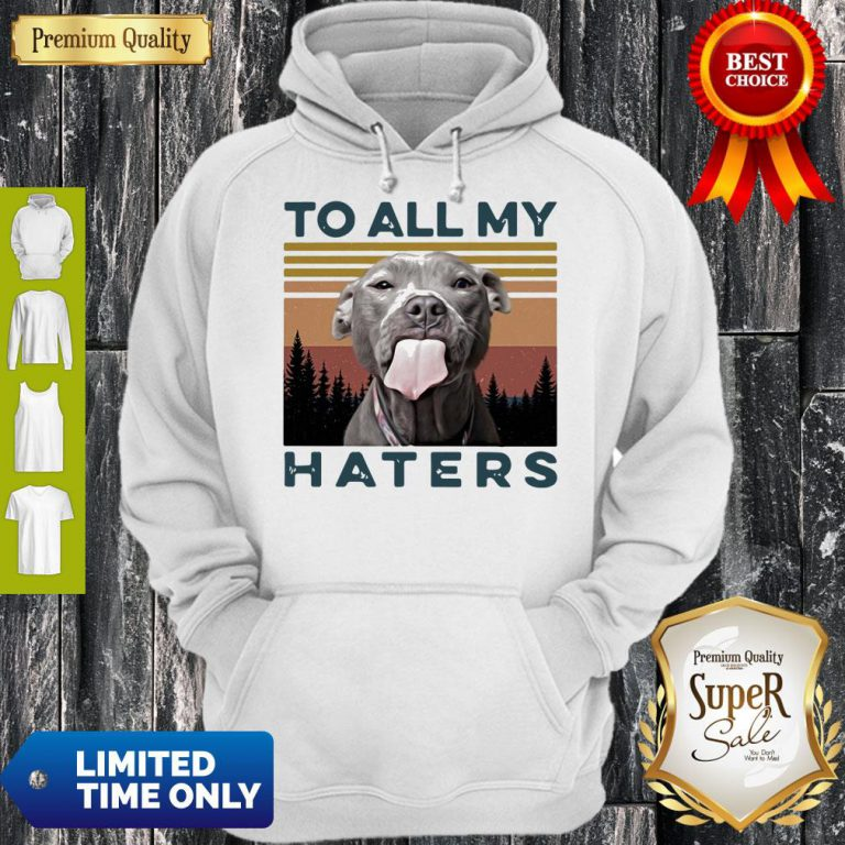 Pretty Pit Bull To All My Haters Vintage Hoodie