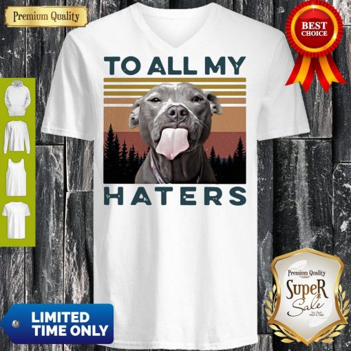 Pretty Pit Bull To All My Haters Vintage V-neck