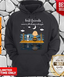 Snoopy And Peanut Best Friends Come In All Shapes And Sizes Hoodie