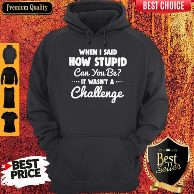 When I Said How Stupid Can You Be It Wasn't Challenge Hoodie