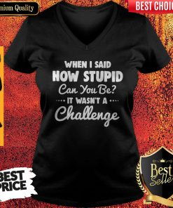 When I Said How Stupid Can You Be It Wasn't Challenge V-neck