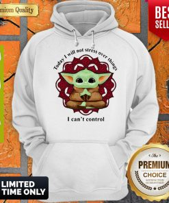 Yoga Chill Baby Yoda Today I Will Not Stress Over Things I Can't Control Hoodie