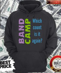 Band Camp Which Count Is It Again Hoodie