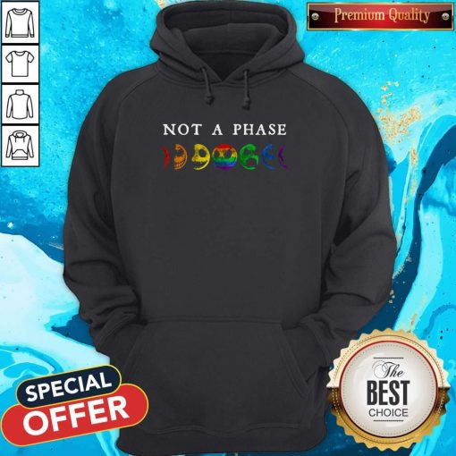 LGBT Not A Phase Hoodiea