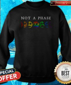 LGBT Not A Phase Sweatshirt