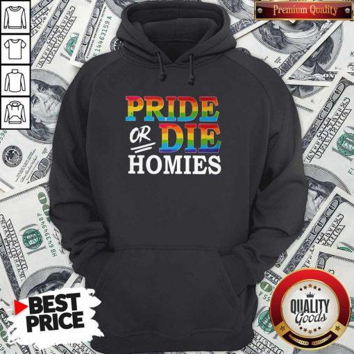 Pride Or Die Homies LGBT shirt ClassicPride Or Die Homies LGBT shirt Classic Hoodiea