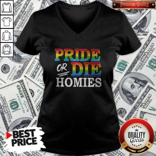 Pride Or Die Homies LGBT shirt Classic V- neck