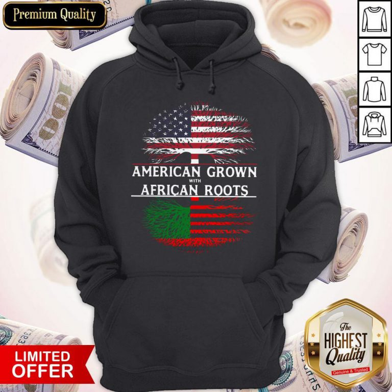 Tree American Grown With African Roots American Flag Independence Day Hoodie