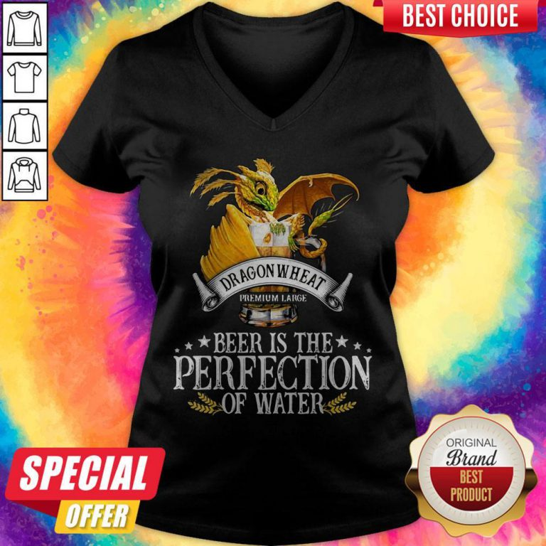 Dragonwheat Premium Large Beer Is The Perfection Of Water V- neck