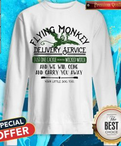 Flying Monkey Delivery Service And We Will Come And Carry You Away weatshirt
