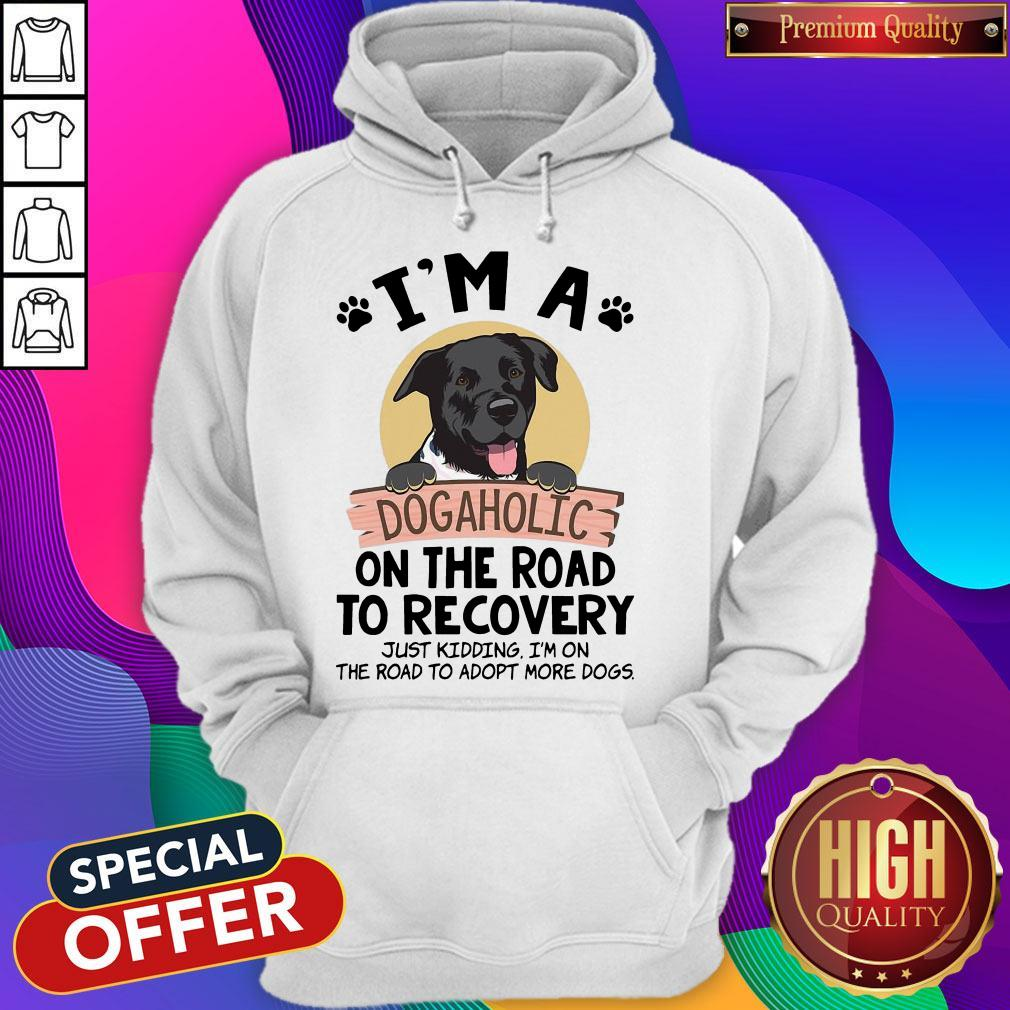 I'm A Dogaholic On The Road To Recovery Just Kidding Hoodiea