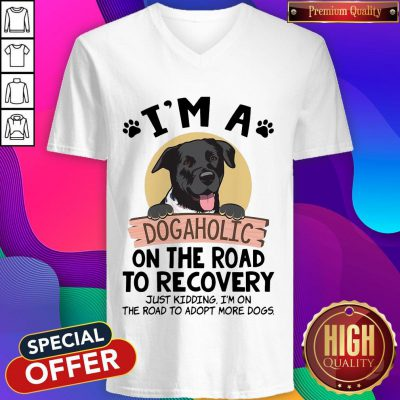 I'm A Dogaholic On The Road To Recovery Just Kidding V- neck
