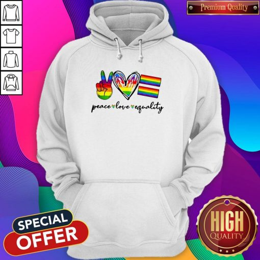 Peace Love Equality LGBT Hoodiea