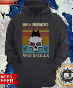 Easily Distracted By Cats And Skulls Day Of The Dead Vintage Hoodie