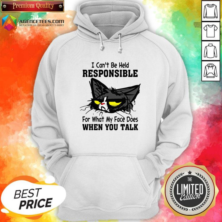 Black Cat I Can't Be Held Responsible For What My Face Does When You Talk Hoodie