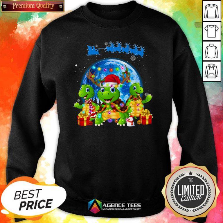 Funny Turtles Merry Christmas Sweatshirt Design By Agencet.com