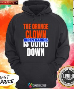 Nice The Orange Clown Is Going Down Biden Harris Hoodie Design By Agencet.com