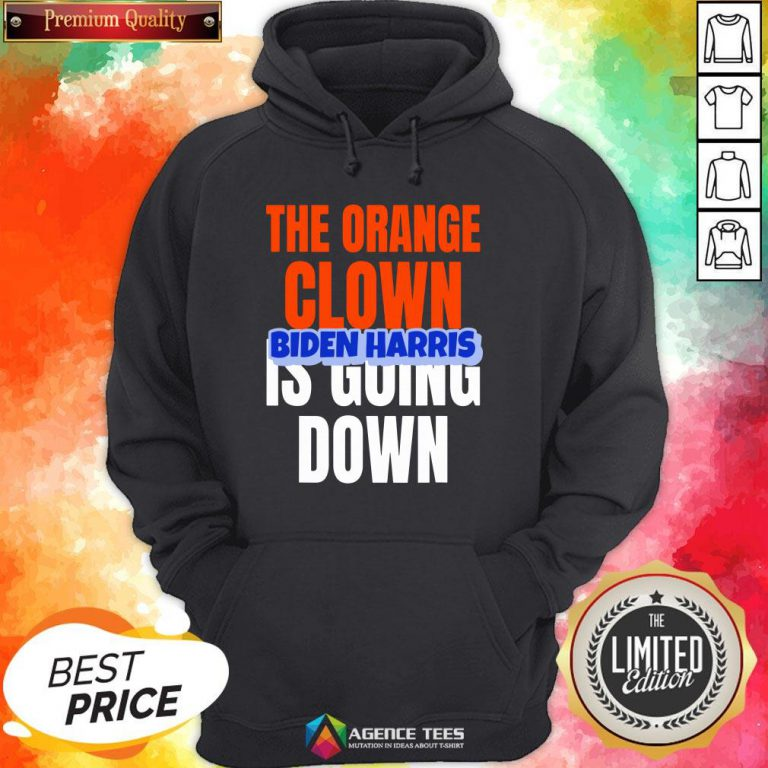 Nice The Orange Clown Is Going Down Biden Harris Hoodie Design By Agencet.com