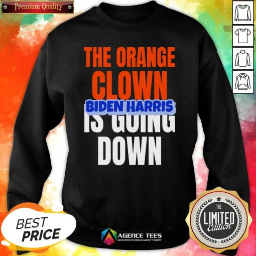 Nice The Orange Clown Is Going Down Biden Harris Sweatshirt Design By Agencet.com