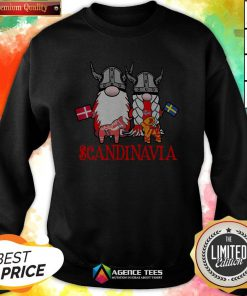 Scandinavian Skandinavisches Nordischer Gnome Viking Sweatshirt