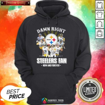 Nice So Damn Right I Am A Pittsburgh Steelers Fan Now And Forever Signature Hoodie - Design By Agencetees.com