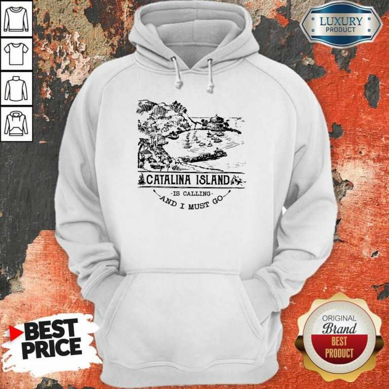 Awesome Camping2801 Catalina Island Is Calling And I Must Go Hoodie