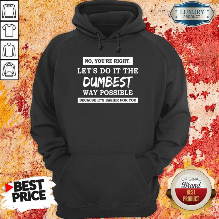 Good No You'Re Right Let'S Do It The Dumbest Way Possible Hoodie