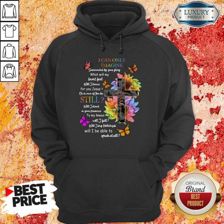 Faith I Can Only Imagine Sill Hoodie